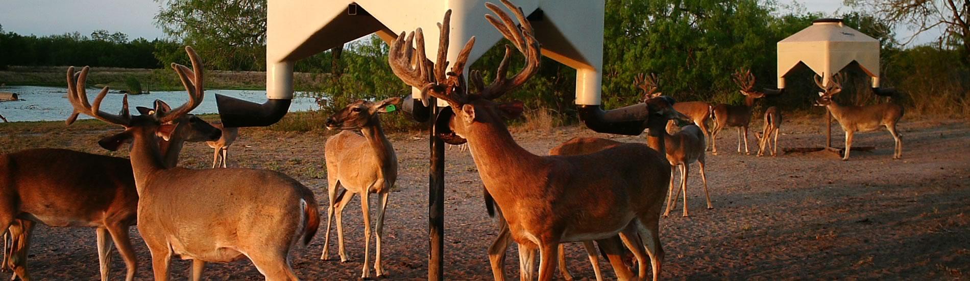 Kenco deer feeders manufacturer